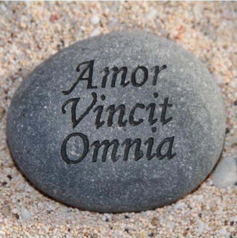 wenssteen_amor-vincit-omnia